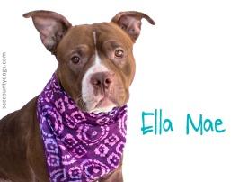 Ella Mae--id