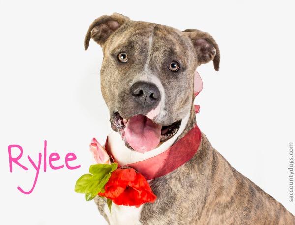 Rylee_A735889