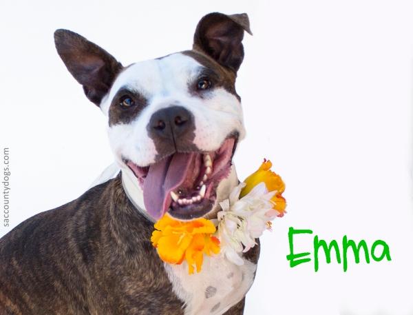 Emma_A740806
