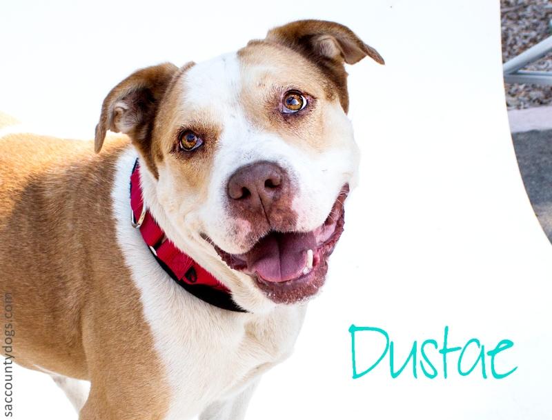 Dustae_A746899